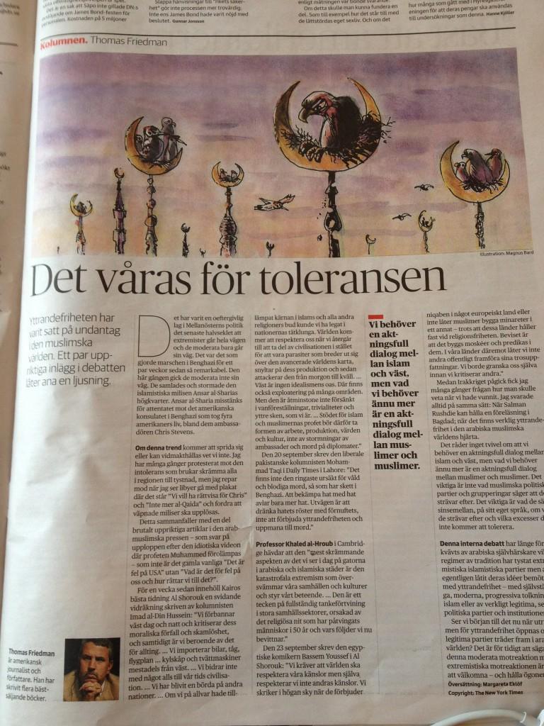 Längtan efter tolerans. Renew Magazine.