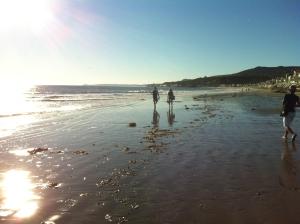 Malibu Beach. Vilket underbart ställe. Lyxhus på stranden. Det kan knappast bli bättre.