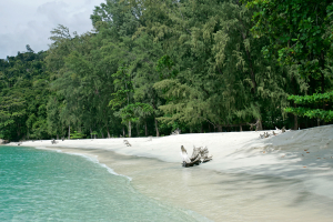 Deserted beach clear water Ko Adang island Thailand