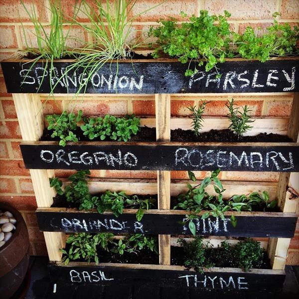 Tips för dig som vill odla men inte har en trädgård - Renew Magazine