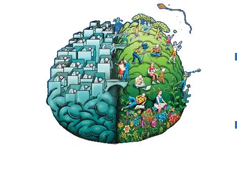 hjärnhalvor